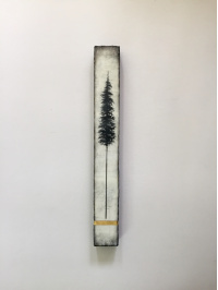 Alanna Sparanese - Tall Trees Series