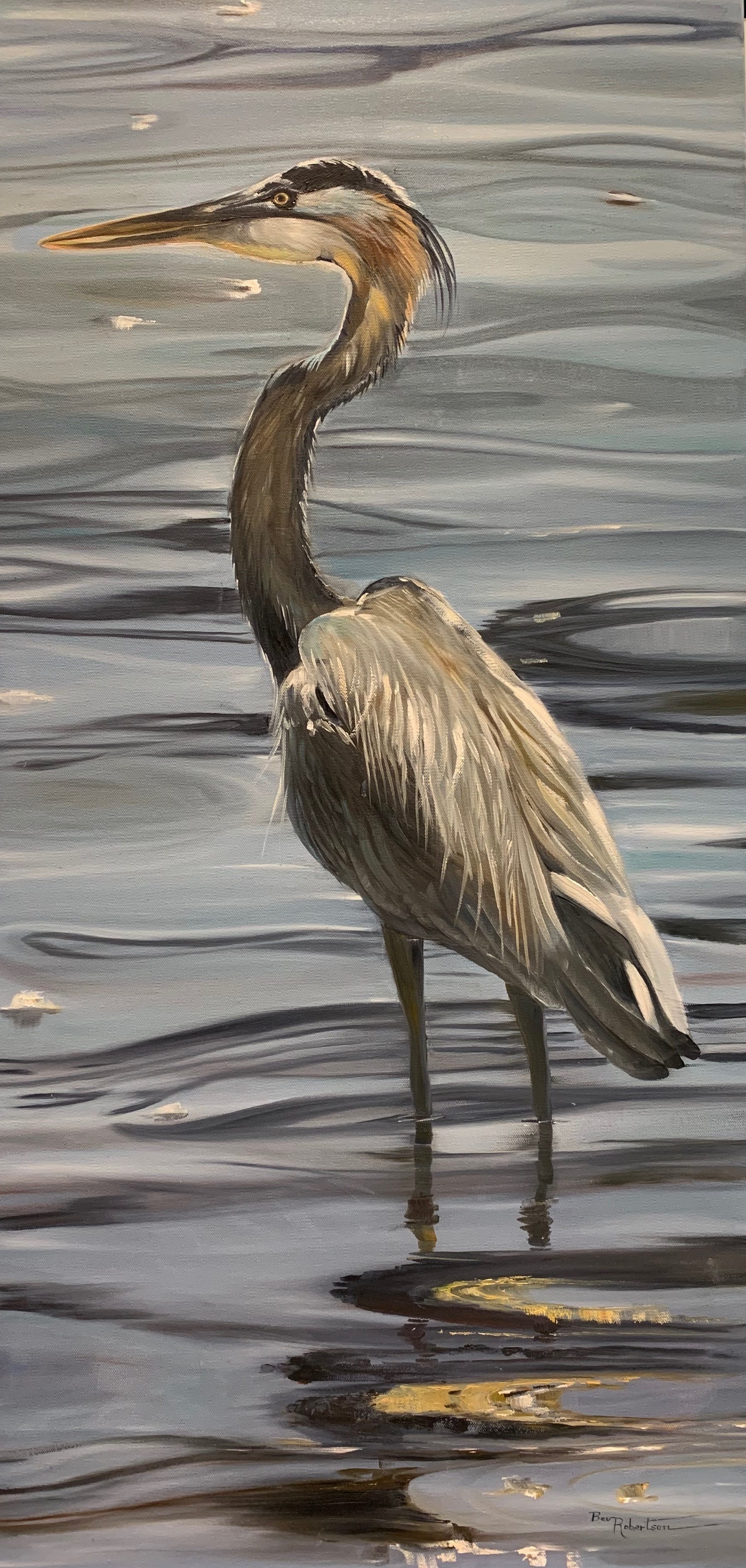 Bev Robertson - Patiently Wading